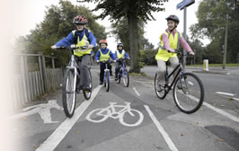 Adult and young people cycling